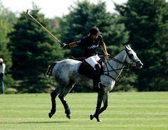 . Living In Amsterdam, Sport Of Kings, Polo Club, Irish Men, Dream Life, Equestrian, Beast, Racing, Horses