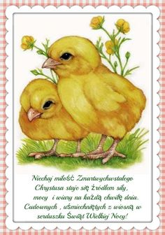 F&S Diamond Painting Store Two Little Yellow Chicks Cute Animal Drawings, Art Drawings, Cute Baby Animals, Farm Animals, Robin James, Cute Pictures, Animal Pictures, Chicken Art, Galo