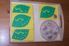 maths tray: hungry caterpillar holes in the leaf and stone with number on it