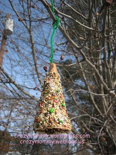 icecream cone birdfeeders -  cheaper than with bagels for Beehive???  Add cheerios, seeds, corn..