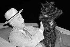 """Fala was born on April The little Scottish Terrier was given to President Franklin D. Roosevelt as an early Christmas gift by his distant cousin and confidante, Margaret """"Daisy"""" Suckley. Fala: The Most Underrated Presidential Dog Me And My Dog, Past Presidents, Network For Good, Old Quotes, Vintage Dog, Scottie Dog, Black And White Pictures, Funny Stories, Scottish Terrier"""