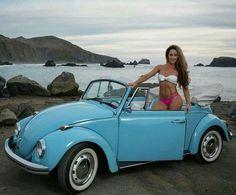 Cox the Ladybird sexy Vw Coccinelle Cabriolet, Benfica Wallpaper, Hot Vw, Bus Girl, Beetle Car, Vw Vintage, Vans Girls, Vw Cars, Volkswagen Bus