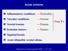 Testicular artery doppler study