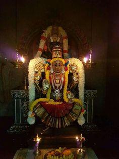 Goddess Narayani (also known as Durga and Parvati )