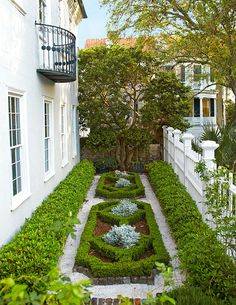 Small parterre of a historic Charleston home planted with boxwood, ivy and dwarf mondo grass. Photo by Brie Williams. From www.traditionalhome.com.