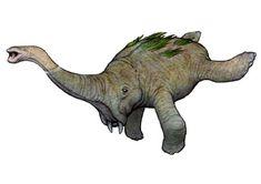 Future Evolution of elephant into an aquatic creature