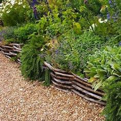 The woven wattle fencing is reminiscent of raised beds found in kitchen gardens all across the Irish countryside. It will keep the dogs in, while still allow the Barkley's to visit with neighbors.