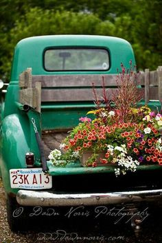 old truck plus gorgeous flowers - love