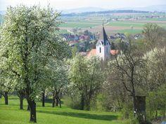 Kirnberg an der Mank (Melk) Niederösterreich AUT
