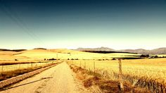 Boesmansfontein, Swartland West Coast, South Africa, Vineyard, Country Roads, Happiness, Landscape, Holiday, Outdoor, Beautiful