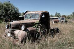 Old Dodge truck