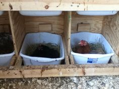 Nest box idea, easily cleaned!                                                                                                                                                                                 More