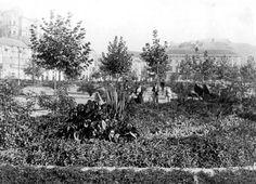 parque 1900 temboury