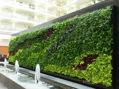 Gorgeous Green Wall: 3,840 Living Plants Comprise Chicago's Embassy Suites'