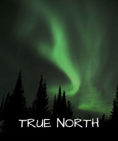 3 of the Best Places to see the Northern Lights in Sunset Country See The Northern Lights, True North, Dark Skies, Places To See, The Darkest, The Good Place, Sky, Sunset, Country