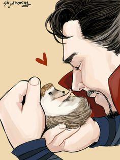 hedgehog Everett & Dr. Strange