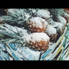 I wish to live somewhere where pineapples grow...and never get covered by snow