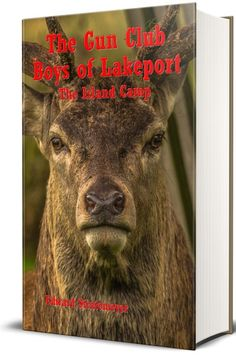 The Gun Club Boys of Lakeport (Illustrated) - The Island Camp ebook by Edward Stratemeyer