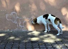 No Boundaries Everybody has seen a dog sniff another's bottom, but this dog takes it to a whole nother level. He's sniffing a chalk drawn dog's bottom! We definitely laughed out loud to this one. 1 2 3 4 5 6 7 8 9 10