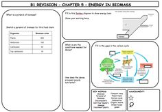 Fantastic set of revision mats for Aqa Science, Science Biology, Science Lessons, Teaching Science, Earth Science, Science Ideas, Gcse Biology Revision, Science Revision, Additional Science