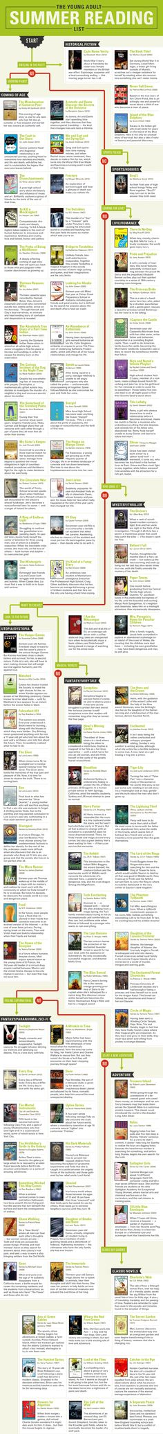 Teen Summer Reading Flowchart - An infographic anyone could use for teen or crossover reader's advisory.