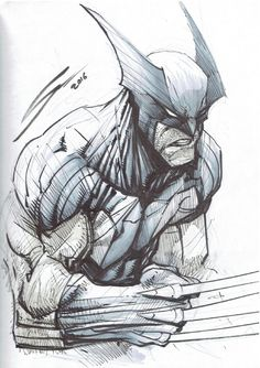 Wolverine by Gerardo Sandoval, in Kevin Canlas's X-Men Comic Art Gallery Room Comic Book Artists, Comic Book Characters, Comic Book Heroes, Comic Books Art, Comic Art, Marvel Wolverine, Marvel Comics Art, Of Wolf And Man, Marvel Drawings