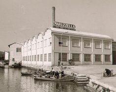 Nel 1918 Igino Mazzola fonda la sua ditta individuale dedicata al commercio dei prodotti ittici. Nel 1938 acquista una fabbrica sull'Alto Adriatico e fonda la sua flottiglia. La storia della ditta Mazzola attraversa tutti i cambiamenti economici e sociali dell'Italia, ma nel suo percorso c'è sempre una canzone. Quella scritta da Renato Carosone nel 1958 ispira il nome di Maruzzella. Per primo in Italia introduce il formato da 100 come monoporzione cambiando le abitudini alimentari degli…