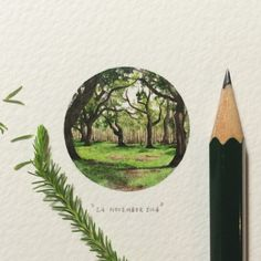 365 Postcards for Ants - These are AMAZING! This is only a 10 cm x 10 cm background - Check the artist out at http://lorraineloots.com