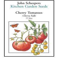 Cherry Falls Cherry Tomato | John Scheepers Kitchen Garden Seeds Cherry Tomato Plant, Red Tomato, Tomato Plants, Plum Tomatoes, Heirloom Tomatoes, Cherry Tomatoes, Brandywine Tomato, Determinate Tomatoes, Tomato Garden
