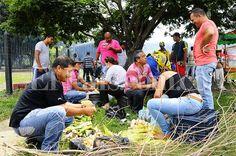 Varias toneladas de fruta tuvieron que ser enterradas en La Unión, norte del Valle del Cauca, debido a que los camioneros se sumaron al paro nacional agrario y no se pudieron despachar cargamentos a ciudades como Bogotá, Medellín, Popayán y Pasto. Más información: http://www.elpais.com.co/elpais/valle/noticias/entierran-fruta-danada-por-efectos-paro-agrario-union-valle
