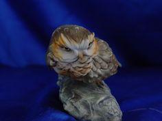 Sculptures of eagles, hawk,Little Owl, swallow, woodpecker, Robin owl lapwing porcelain Capodimonte