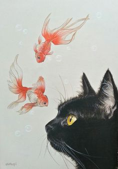 Goldfish and black cat - - Katzen - Cat Drawing Art Inspo, Inspiration Art, Photo Chat, Art Et Illustration, Cat Illustrations, Cat Wallpaper, Goldfish Wallpaper, Cat Colors, Crazy Cats
