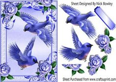 Blue Birds flying and blue roses in ornate frame on Craftsuprint - Add To Basket!