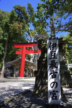 Shirahama Jinja Shrine (白浜神社) JAPAN