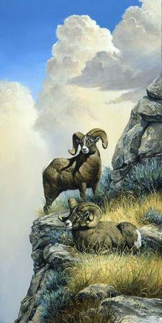 Linda Picken Art Studio / Two Bighorns.jpg - - Linda Picken Art Studio / Two Bighorns.jpg Buongiorno Linda Picken Art Studio / Two Bighorns. Wildlife Paintings, Wildlife Art, Animal Paintings, Large Animals, Animals And Pets, Cute Animals, Animal Sketches, Animal Drawings, Cabras Animal