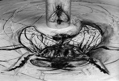 """"""" What Will Come (has already come)"""" 2007, mesa de aço, espelho cilíndrico de aço, filme animado de 35mm."""