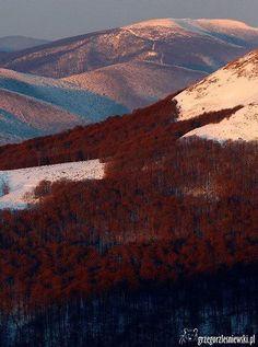 Bieszczady Mountains in Poland