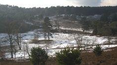 Beetje sneeuw op de Brunssemerheide