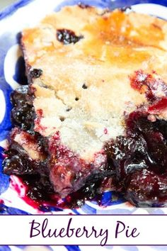 Blueberry Pie with homemade sugared crust ~ nature's candy in pie form!  Tastes just like summer should from 5DollarDinners.com