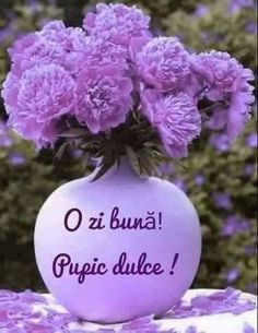 Violeta Ungureanu - Google+ Cute Gif, Shades Of Purple, Good Advice, Good Morning, Cool Pictures, Christmas Bulbs, Holiday Decor, Flowers, Beautiful