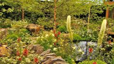 BBC Two - RHS Chelsea Flower Show - Garden 15: Vital Earth: The Night Sky Garden