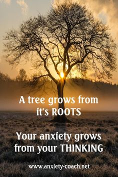 Your life is the manifestation of your thoughts Effects Of Anxiety, Understanding Anxiety, Emotional Regulation, How To Improve Relationship, Career Coach, Cbt, Anxiety Relief, Dont Understand, Ptsd