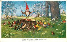All The Birds Are Already Here Gnome