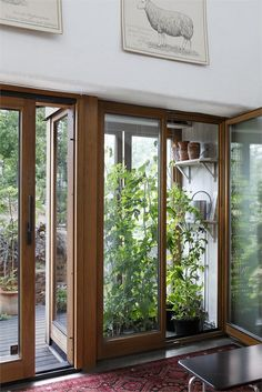 greenhouse with access from kitchen