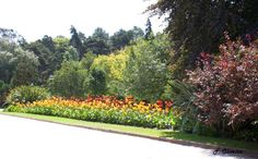 Jardins de Setúbal - Portugal