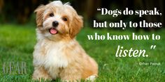 Do you listen to your #dog?  Love this #quote via Pamuk #GearforPets #wisdom