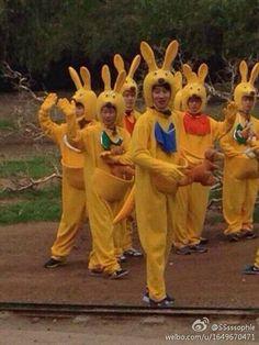 Kim Woo Bin and Rain become kangaroos for 'Running Man'? in Australia :D