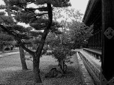 Sanjūsangendō III - Sanjusangendo Temple (Kyoto)