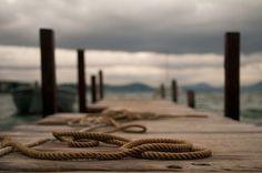 Oceania | THE SOCIETY INC