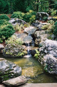 more waterfall inspiration from Arkansas Arkansas Waterfalls, Pine Bluff, Garden Ponds, Dumpster Fire, Outdoor Ideas, Natural Beauty, Gardening, River, Nature